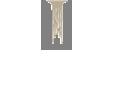 CIPF Logo